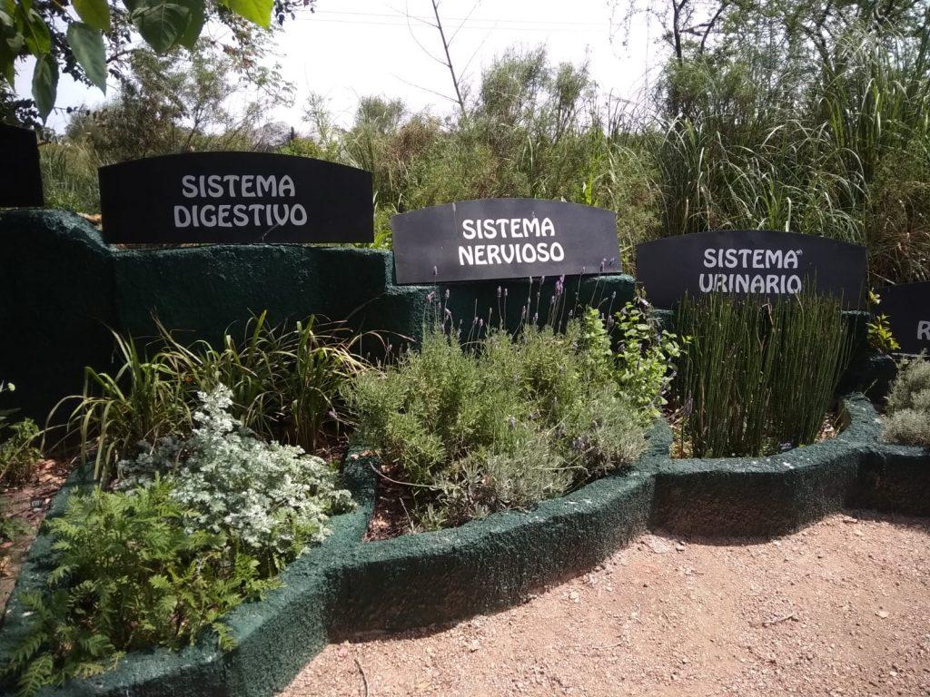 Visita interdisciplinaria a Montevideo con 1º año